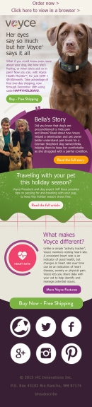 voyce-holiday-newsletter-mobile